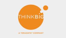 Think Big Terradata logo
